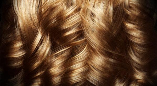 V-Ray Next 3ds Max Hair