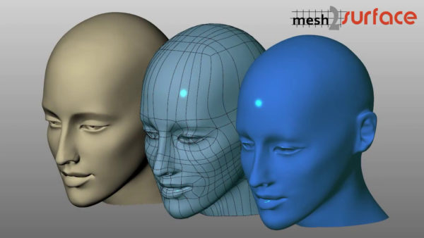 mesh2surface for rhino